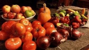 Adirondack Farm Produce by Shannon Houlihan