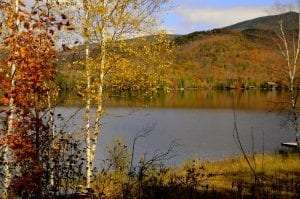 Adirondack trail fall scenery