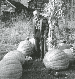 Elmer Droms with his famous pumpkins ca 1998