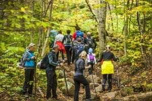Crowds of hikers ascend a High Peaks Wilderness trail on Columbus/Indigenous Peoples Day, 2016 courtesy Nancie Battaglia