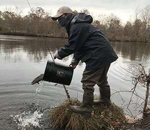 Fall Trout Stocking on Long Island provided by DEC