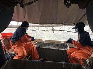Lake Erie Fisheries Research Unit provided by DEC