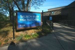 Salmon River Fish Hatchery Visitor Center