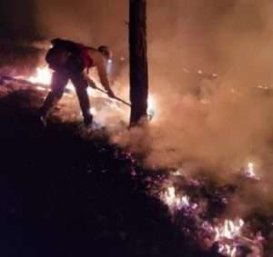 Wildland firefighting techniques used in Colorado