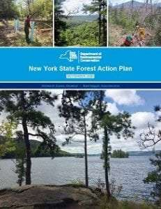 2020 New York State Forest Action Plan
