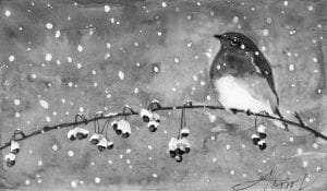 TOS_Winter Bluebird