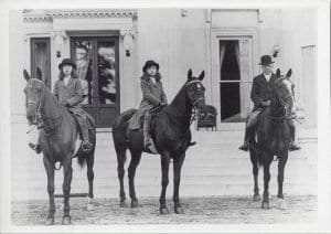 Staatsburgh estate horses