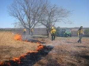 Prescribed Burning at Saratoga Battlefield