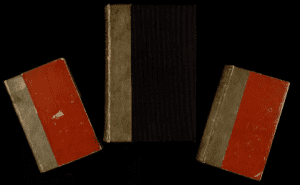 Three books bound from the skin of Mary Lynch