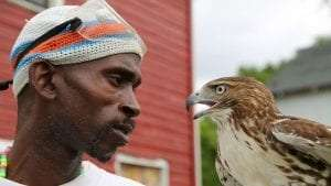 Falconer Rodney Stotts holds a Red-tailed Hawk by Annie Kaempfer