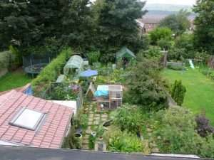 Suburban permaculture garden in Sheffield UK with different layers of vegetation courtesy Wikimeida user Claire Gregory