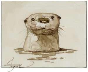 TOS_Otter