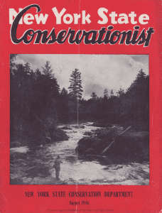 1946 NYS Conservationist Magazine