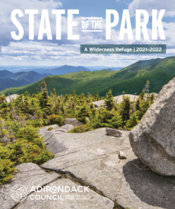 2021 state of the park