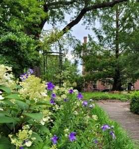 Ten Broeck Mansion Gardens 2021