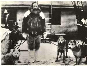 Robert Peary in Furs with Dogs