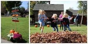 Adirondack Harvest Festival