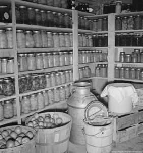 root cellar courtesy Time and the Valleys Museum